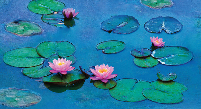 2497 AOS: WATER LILIES OF MONET - THE MAGIC OF WATER & LIGHT